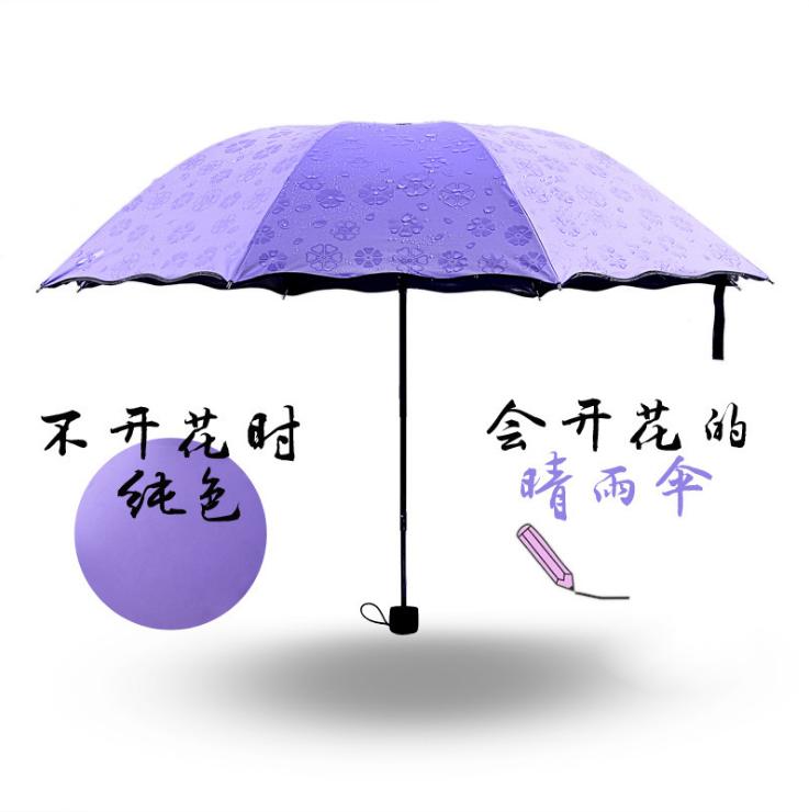 送雨伞+(颜色随机发)